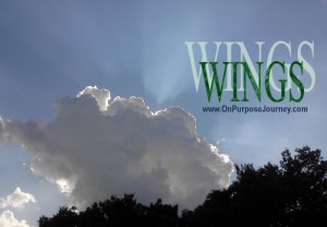 WINGS of On Purpose Journey Inc.